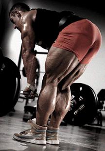 Female bodybuilding pof Build A
