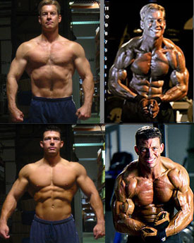 ultimate mass building fitness