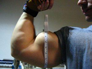 "19"" Arm - Overtraining Test"