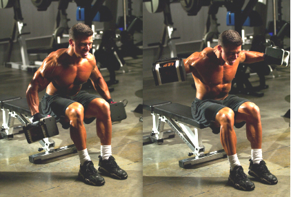 Jonathan Lawson seated lateral raises - Muscle-Building Myth Exploded:  Power vs. Density
