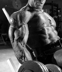 Triple-Threat Approach to Massive Muscle Growth