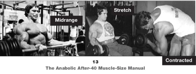 Arnold Schwarzenegger, POF biceps exercises