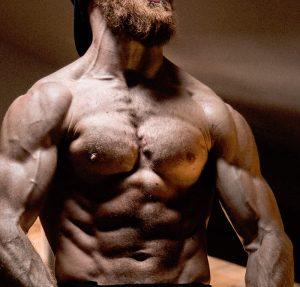 Lean muscle, flexed