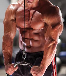 Muscular torso doing triceps pushdowns
